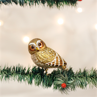 Pygmy Owl Old World Ornament